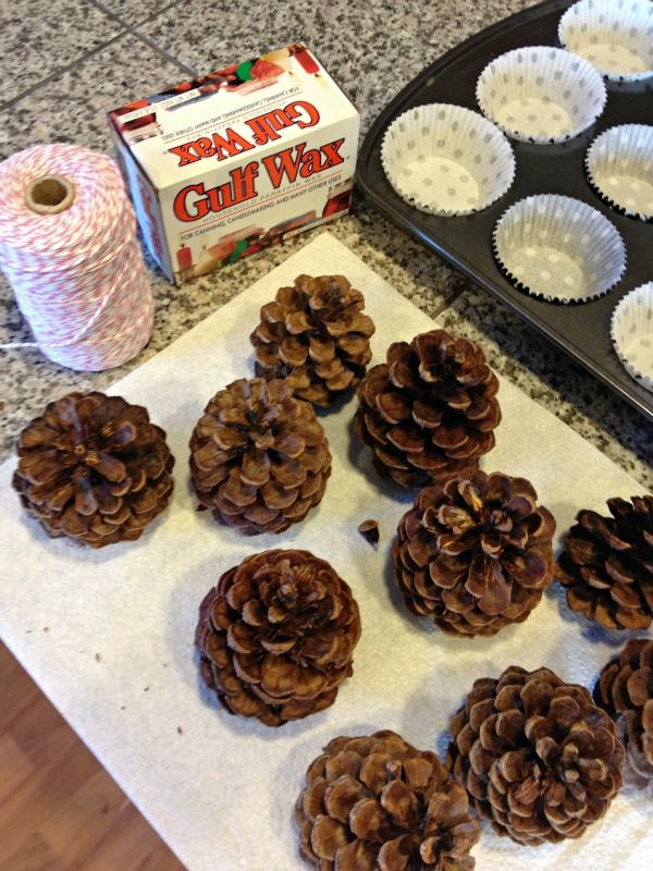 Pinecone fire starters   pine cones paraffin wax cotton string (bakers twine is cotton) cupcake liners muffin tin double boiler