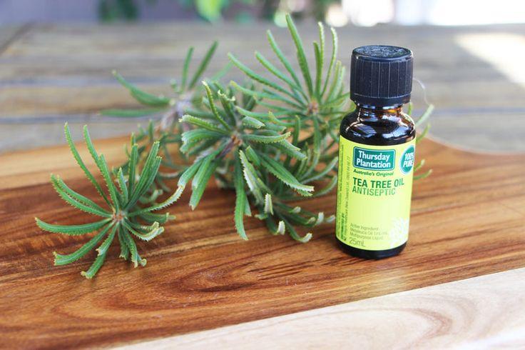 treat-polyps-with-tea-tree-oil