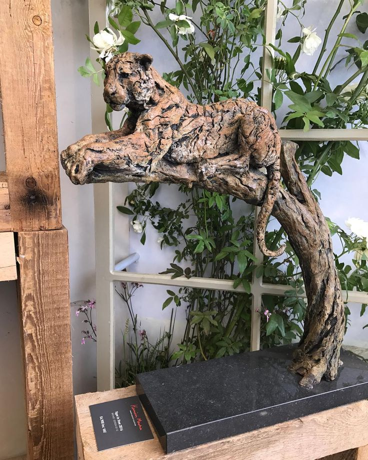 Another beautiful morning at Chelsea Flower Show!  Stand 292 - Tiger in Tree 2016 #thursday #chelseaflowershow #chelsea #london #tiger #sculpture #bronze #india #wildlife #bronzesculpture #art #statue #plants #flowers @the_rhs @rachaelwhitedesigns