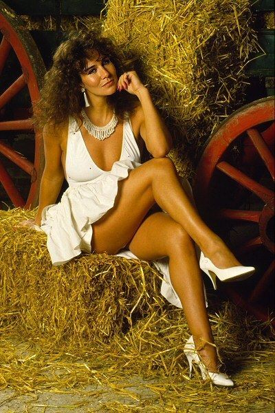 Linda Lusardi 5,700 Pictures Collection Vols 1 to 3 DVD (Photo/Images Disc) • £2.99 - PicClick UK