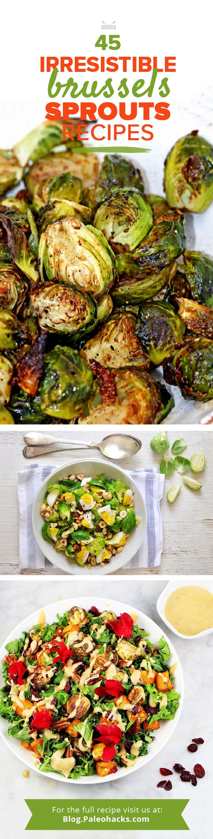 Brussels Sprout lovers, we know who you are. So, we gathered the best and most irresistible Brussels Sprout recipes in one delicious list. Find the full recipe collection here: http://paleo.co/BrusselsSprRcp #paleohacks #paleo