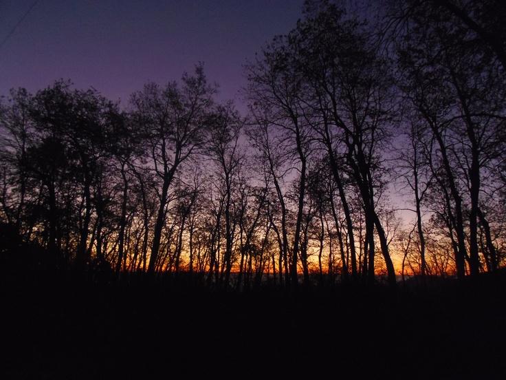 Y la noche cae sobre Altos de Lircay...Sobre los robles, sobre la tierra misma