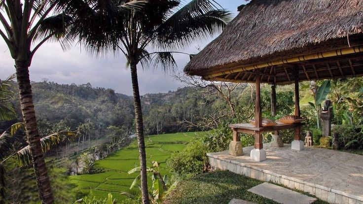 Villa Melati | 1,2,3 bedroom option | Magnificent views of Bali rain forest, river gorge, rice terrace and distant volcanos #ubud