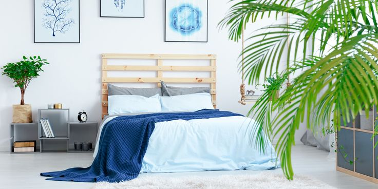 Are you looking for superior-quality bed sheets? If yes, visit DTY Store where you can buy bed sheets on sale. Get upto 70% #Discount on listed #Beddingsheets And Upto 40% on #outdoorfurniture#outdoorfurnituresale #foldingchairsforsale #bamboosheetssale