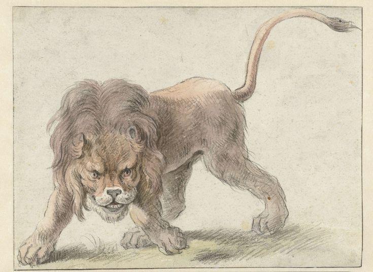 Leeuw, Cornelis Saftleven, 1617 - 1681