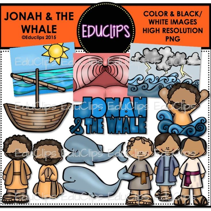 Buy essay online cheap jonah and the whale english commentary