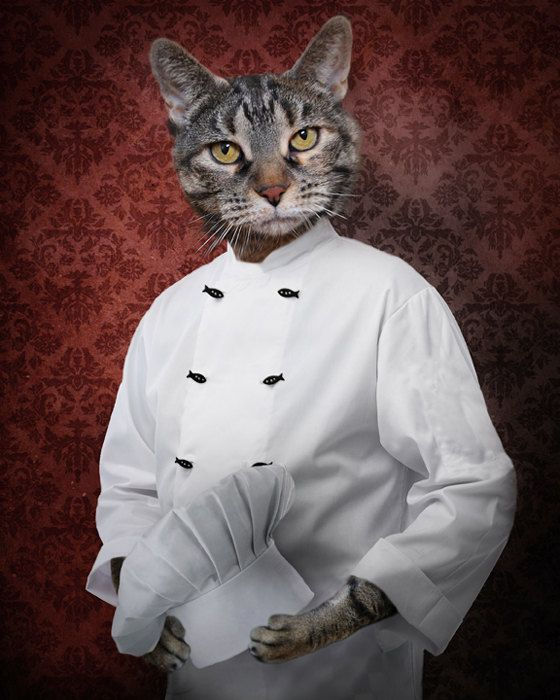 Chef Cat Art Tabby Cat Photo Collage Pet Portrait Animal Photography Kitchen Decor Chef Hat Gift for Pet Lovers Print - Chef Lola