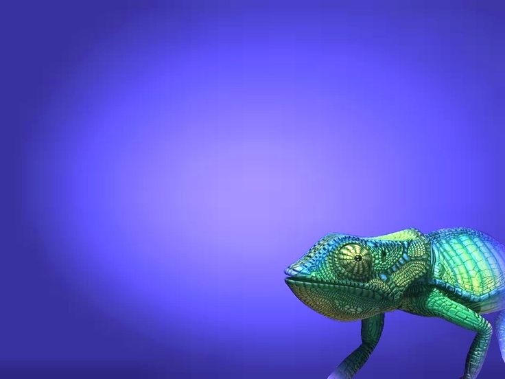 chameleon on blue ppt backgrounds powerpoint