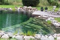 Svømmesø, Havebassin, Naturpool, Naturbassin og Friluftsbad i 4330 Hvalsø - Anlægsgartnerfirmaet Junckerhaven