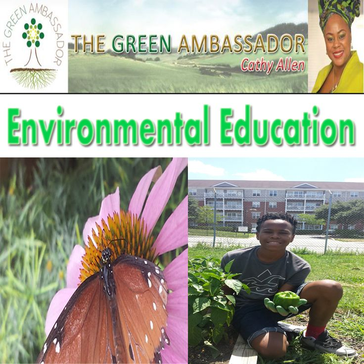 environmental contextual factors in a school This paper reviews how cascading levels of contextual influences, starting with family factors and extending to neighborhood and school factors, can affect children.