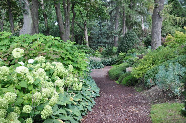 Jardin de sous-bois. Création et photo Taffin.