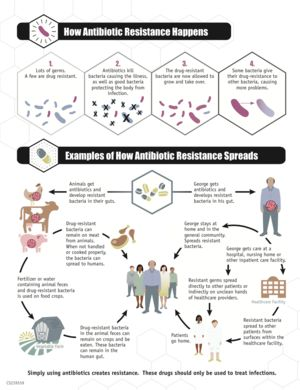Antimicrobial resistance - Wikipedia, the free encyclopedia: https://upload.wikimedia.org/wikipedia/commons/e/ea/CDCinfographicANTIBIORESISTANCE.png