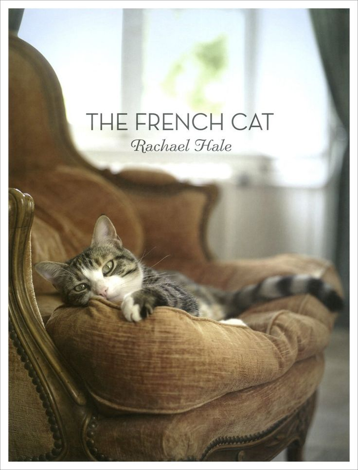 The French Cat by Rachael Hale One of the most successful animal photographers in the world today, Rachael McKenna (née Hale) turns her lens toward France—her newly adopted home—and the charismatic ca
