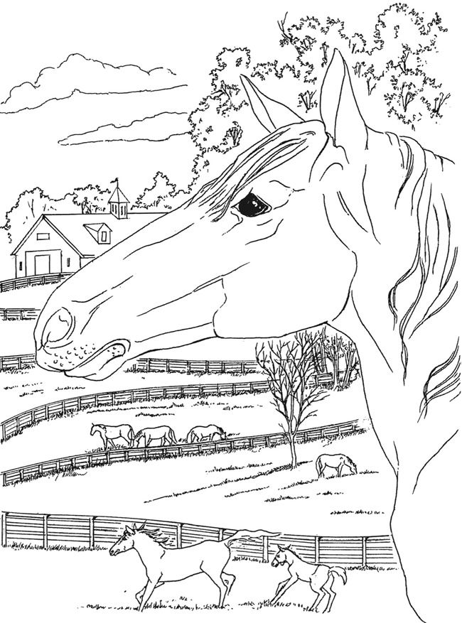 From Creative Haven Country Scenes Coloring Book