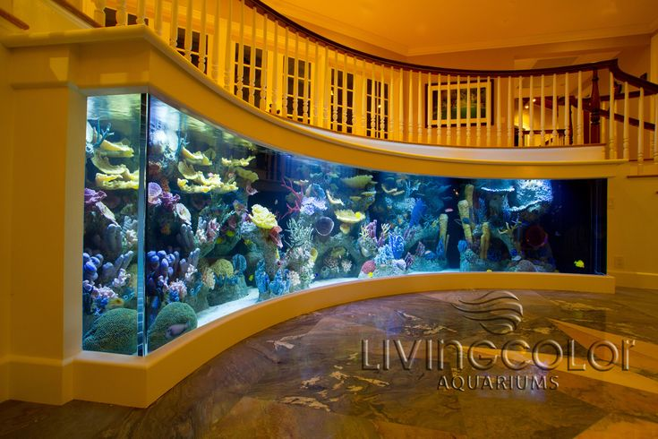 Custom Aquariums, Acrylic Tank Manufacturing, Aquarium Design, Custom Acrylic Aquariums  My god would I love any of these!