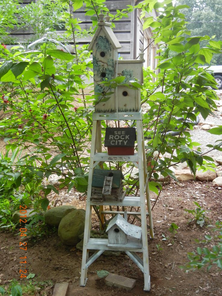 step-ladder with bird houses: Gardens Fun, Gardens Ideas, Birds Houses, Cute Ideas, Neat Ideas, Clever Ideas, Birdhouses Ideas, Gardens Dreams, Step Ladder