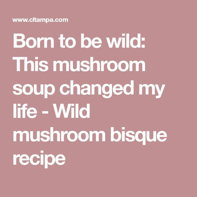 Born to be wild: This mushroom soup changed my life - Wild mushroom bisque recipe