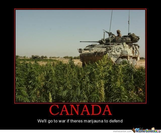 1fb97c42d0718d05147a3f3b223d2e96 canada eh motivational posters 224 best canadian stuff images on pinterest canada, funny images