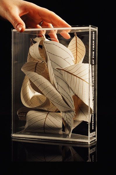 Perspex book award designed for British Council | rosalind wyatt