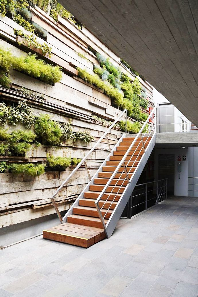 landscape wall   Zentro Office Building and Commercial by Gonzalez Moix Arquitectura