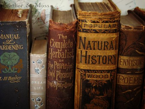 magical alchemy atmosphere HERBS bottles  gardening natural history oracle atmospheric herbalist practice book of herbs  accessories accessories thirteen ravens production awesome Herb Books