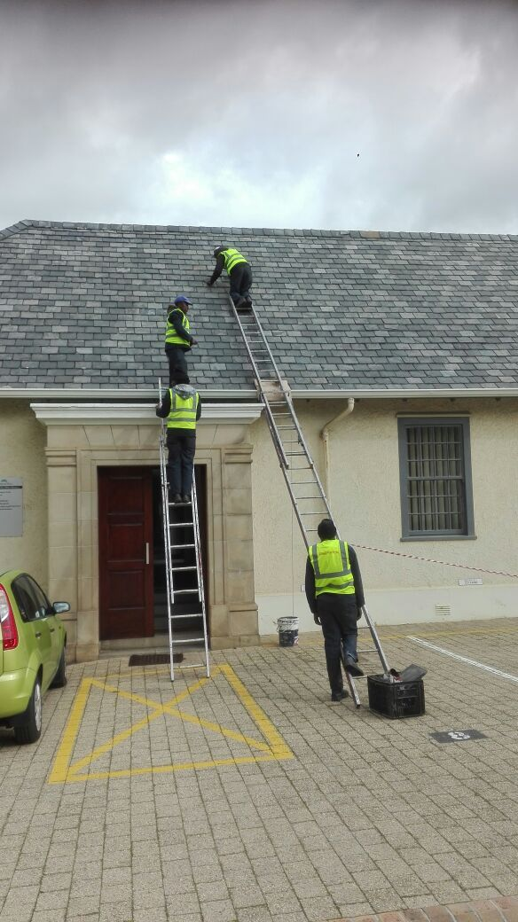 Paramount Roofing Specialises In Residential And Factory Roofs Roofing Roof Residential