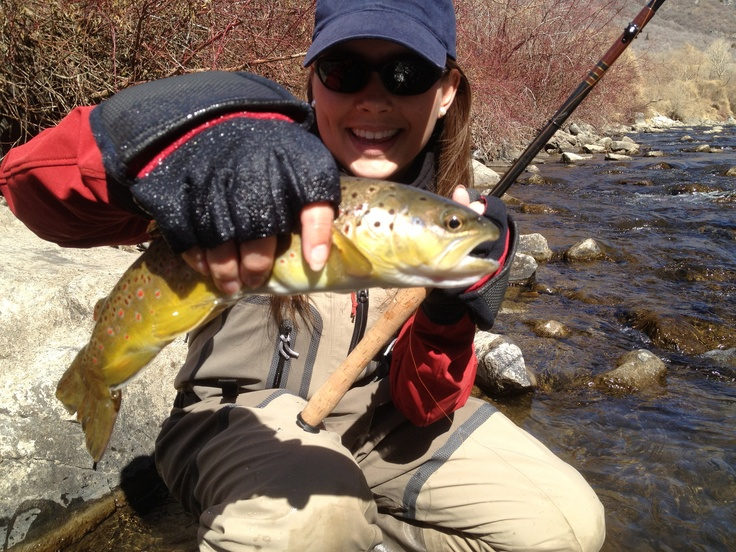 37 best images about provo river utah on pinterest utah for Provo river fly fishing