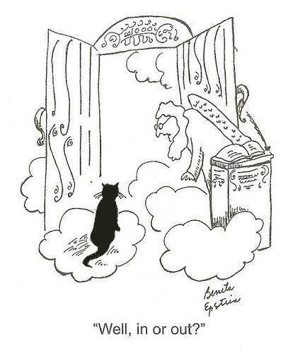 1fbb1e139ce530270193b83bbbf8dba9--rainbow-bridge-cat-cartoons
