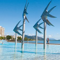 Things To Do in Cairns | In the Area | Rydges Cairns Resort