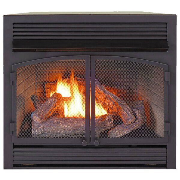 Heating Vent Free Propane Natural Gas Fireplace Insert In 2020 Ventless Fireplace Gas Fireplace Insert Gas Fireplace