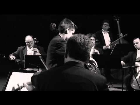 Luka Sulic - Theme from Schindler's List - YouTube