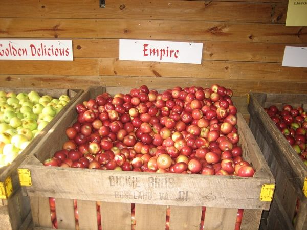 Dickie Brothers Orchards- premium apples are $22 a bushel seconds are $12 a bushelBrother Orchards, Dickies Brother, Bushel Second, Fresh Empire, Empire Apples, Premium Apples, Food Storage Cans