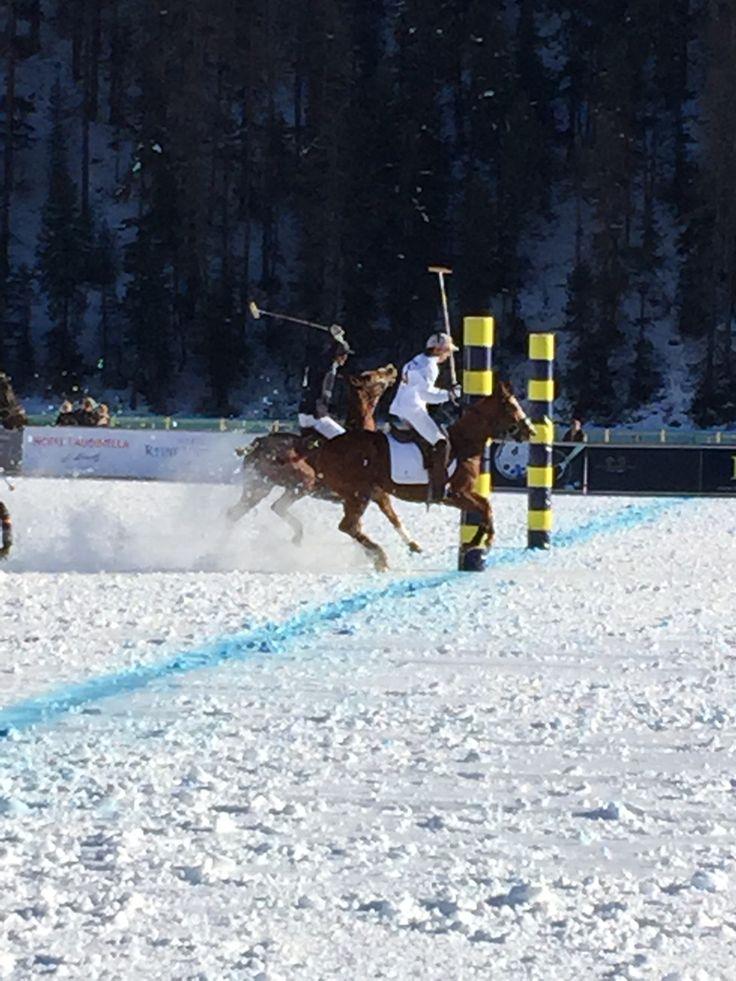Polo in St.Moritz
