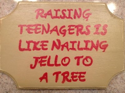 Raising teenagers handmade sign
