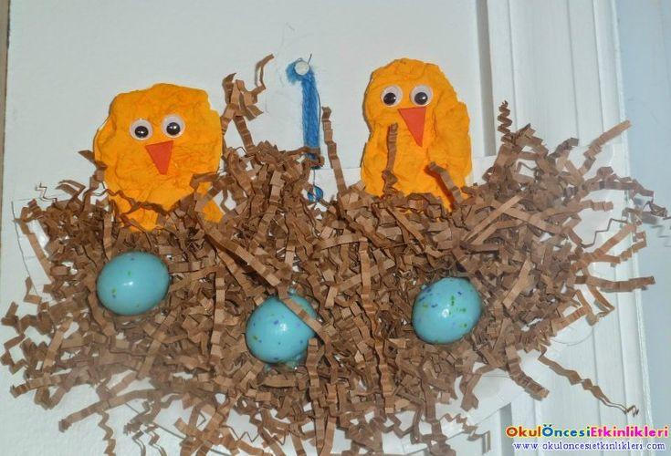 Kuş Yuvaları ve Kuş yapımı
