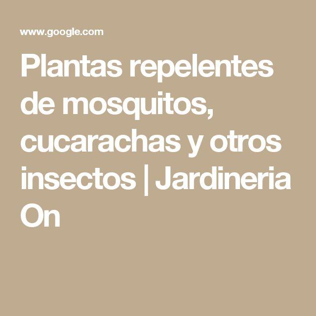 17 mejores ideas sobre plantas repelentes de mosquitos en for Como acabar con las hormigas del jardin