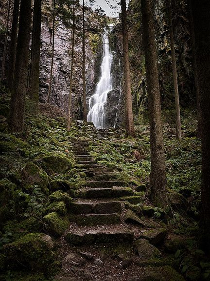 Waterfall Steps, The Black Forest, Germany