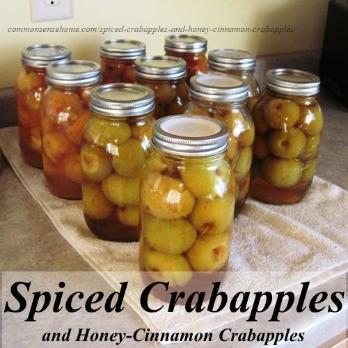Making spiced crabapples and honey-cinnamon crabapples @ Common Sense Home