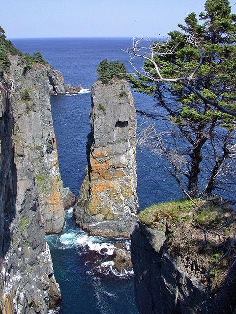 Seastack on Spout Hike, Newfoundland, Canada.