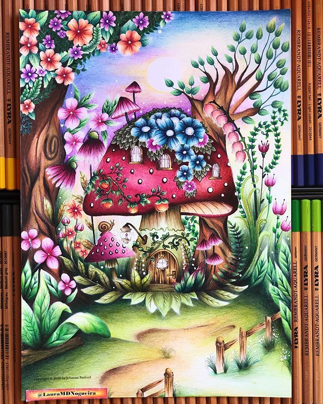 Lauracoloring On Instagram Cogumelo Na Floresta Das Flores Book Flo Enchanted Forest Coloring Book Johanna Basford Coloring Book Color Pencil Illustration
