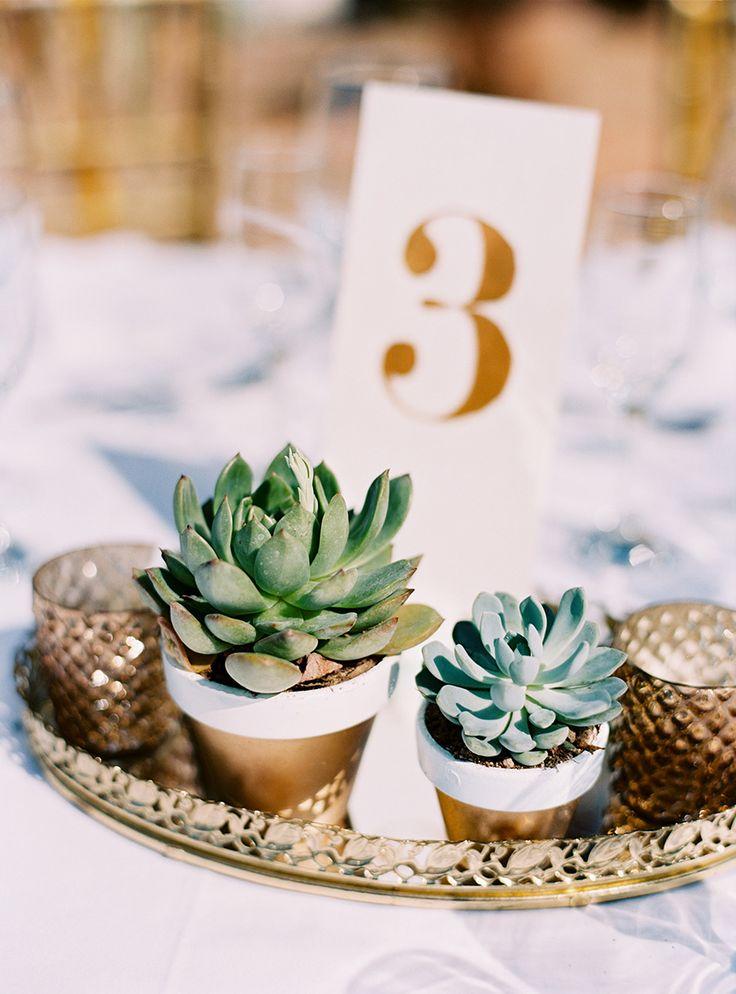 #succulent, #centerpiece  Photography: Jillian Mitchell Photography - jillianmitchell.net  Read More: http://www.stylemepretty.com/2014/08/22/mexico-dreaming-a-destination-wedding-in-sayulita/