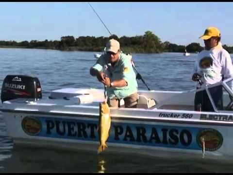 Pesca Alternativa Mais: Emocionante pescaria de Dourado