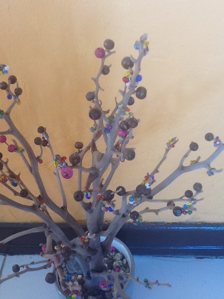 Tropical tree with little balls