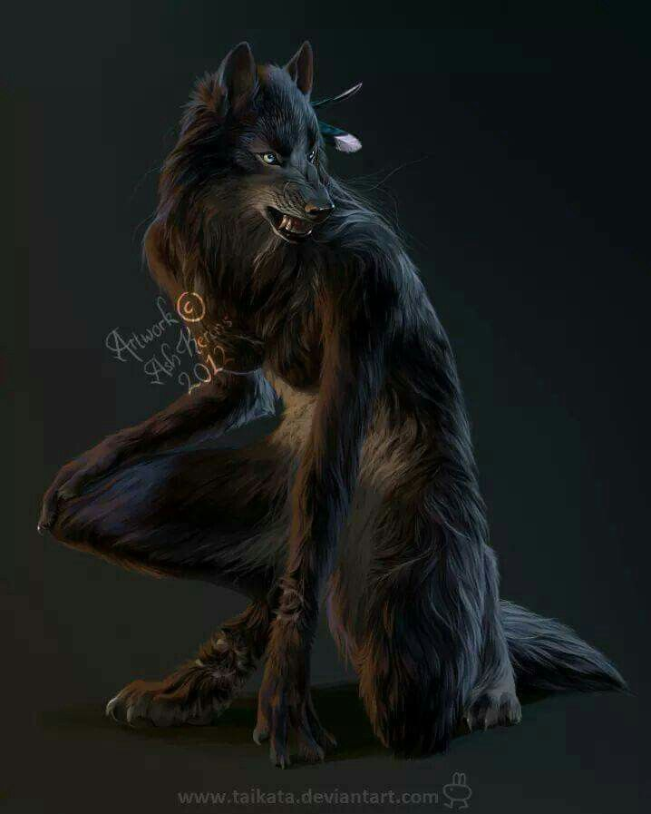 Werewolves Shifters