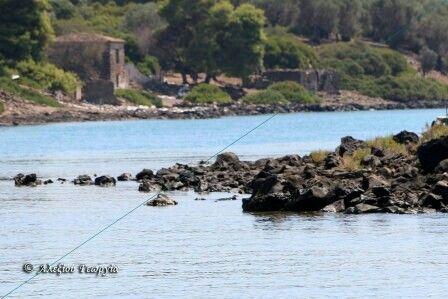 www.galexiou.gr
