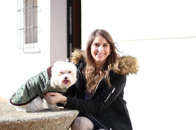 Con Perros y a lo loco | Vida perruna | Dogs & Lifestyle: Ola de frío