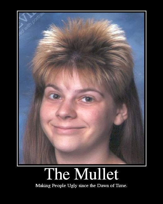 1fbf204c565b6c97bfd1955d91a657b7 mullet hairstyle bad hair day 27 best mullets !!! images on pinterest mullets, ha ha and rednecks