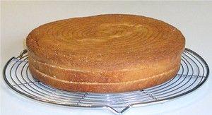 » Bases pour entremets : dacquoises, biscuit à la cuillère, pain de gênes, cakes… A suivre - La cuisine de Mercotte :: Macarons, Verrines, …...