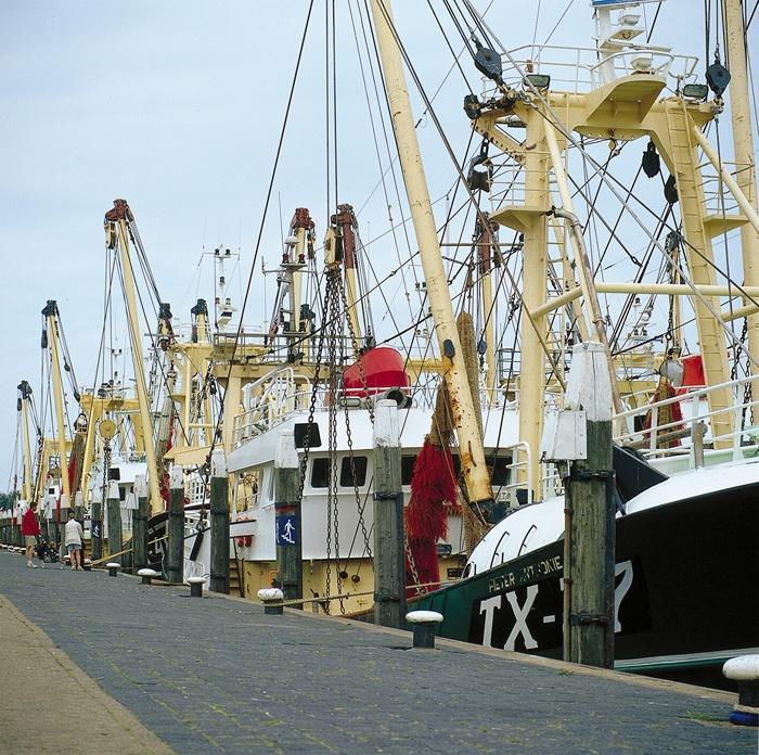 Harbour Oudeschild in Texel (The Netherlands)