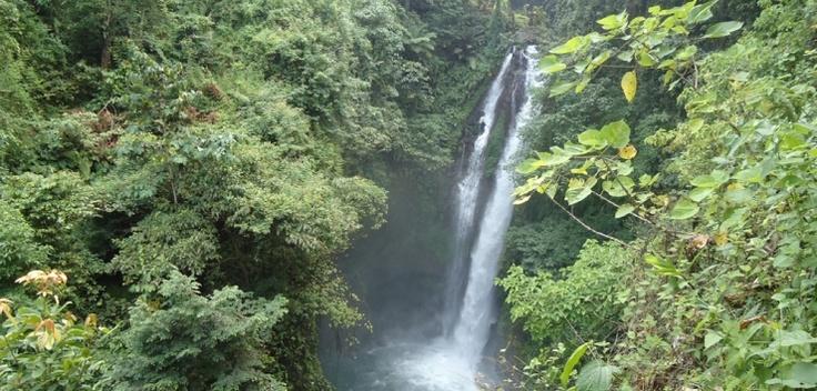 Sambangan Nature Walk Bali Sunrise Trekking & Tours - Ultimate Bali